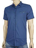 Рубашка Еnisse EGK1343-KZ1529V4 в синем цвете
