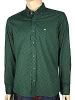 Мужская рубашка с принтом 0085 Н