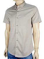 Рубашка Desibel 5058 H #4. с принтом в бежевом цвете