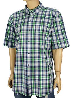 Рубашка мужская Desibel 0310 indigo в клетку разных расцветок