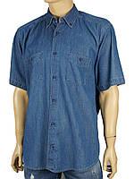 Рубашка мужская Betibo 0260 джинсовая