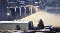 Как изменились цены на перевалку зерна?