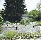 Фонтанная насадка Oase Schaumprudler 22-5 K, фото 5