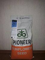 Семена подсолнечника (Пионер) PR64F66