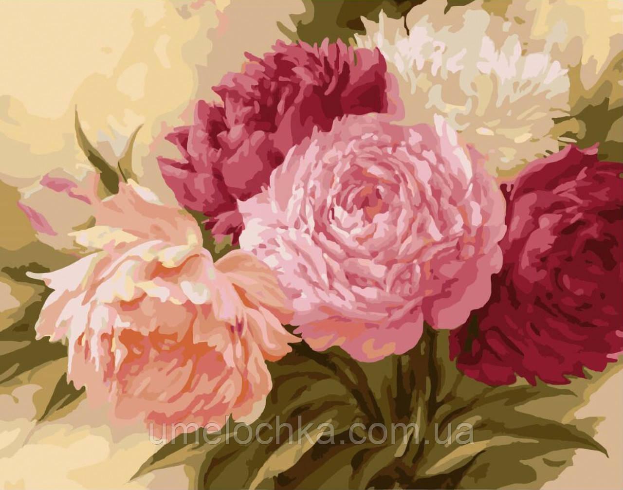 Картина-раскраска Королевские пионы (BRM-G429) 40 х 50 см