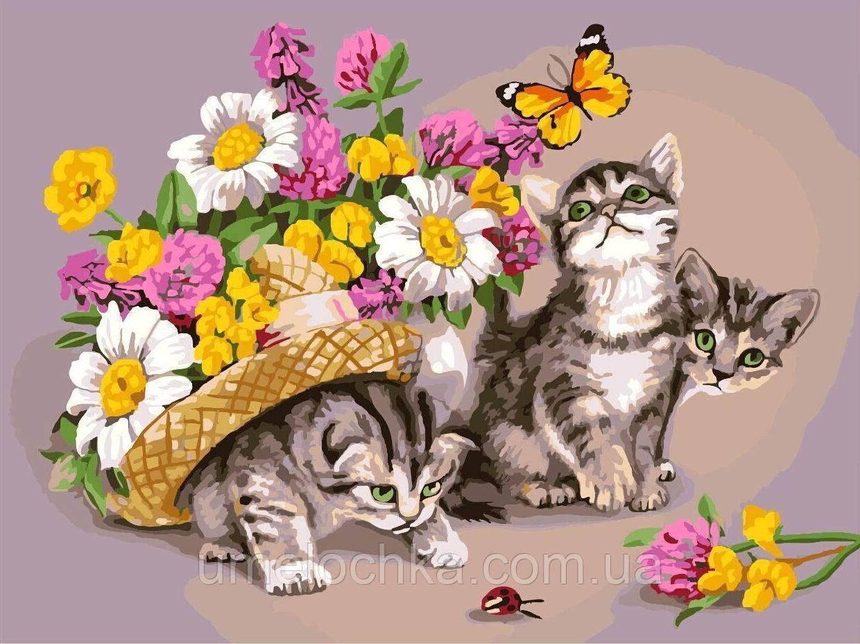 Картина для рисования Котики в шляпе Худ Надежда Бусарева (BRM-GX3069) 40 х 50 см