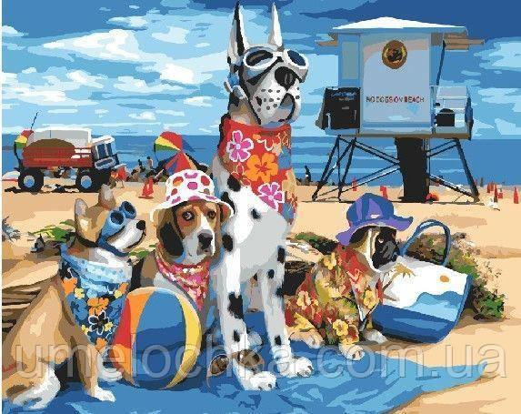 Картина по номерам Собаки на пляже (BRM-GX3255) 40 х 50 см