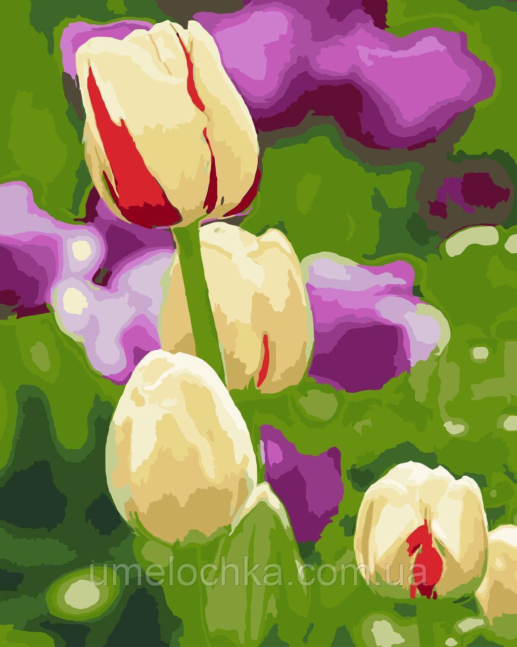 Картина-раскраска Нежные тюльпаны (BRM-GX7062) 40 х 50 см