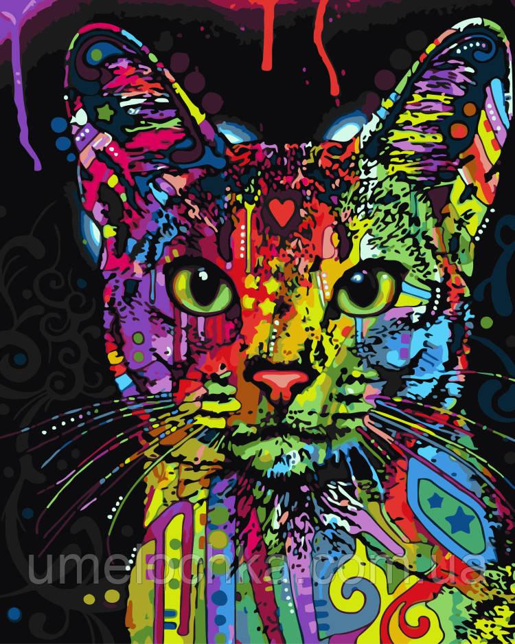 Раскраска по цифрам Абиссинская кошка (BRM-GX9868) 40 х 50 см
