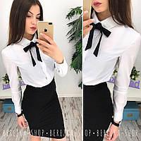 Женский классический костюм: рубашка и юбка