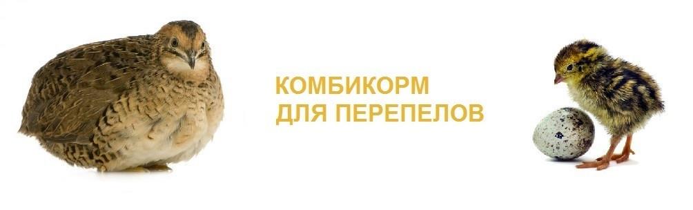Комбикорм СТАРТ для перепелок - Бум маркет в Харькове