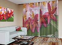 """ФотоТюль """"Тропические цветы"""" (2,5м*3,0м, на длину карниза 2,0м)"""