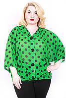 Блуза шифоновая размер плюс Горох зеленый 50-56
