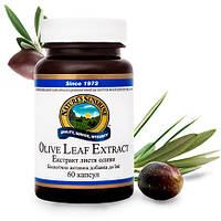 Экстракт листьев оливы, Nsp. Для здоровья сердечно-сосудистой системы и мн.др.