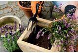 Набор садовых инструментов с пластиковыми ручками (3 предмета) , фото 3