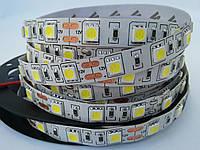 Светодиодная лента 5050 60 IP20 белая невлагозащитная