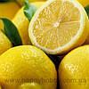 Лимонное эфирное масло, 10 мл