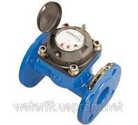 Счетчик учета воды ирригационный WI-100 (ДУ100)