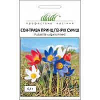 Семена Сон-трава Принц Генрих 0,1 грамма Hem Zaden
