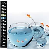 Термометр (градусник) стікер на самоклейці для акваріума, шкала Цельсій/Фаренгейт, фото 1