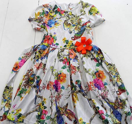 Платье попугай 122-152, фото 2