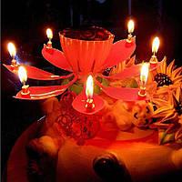 Раскрывающаяся свечка: цветок лотоса! , фото 1