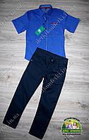 Нарядный  костюм для мальчика: рубашка Lacoste и брюки