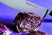 Ножи кованые Arcos серия Riviera