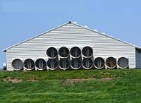 Вентиляция животноводческих ферм