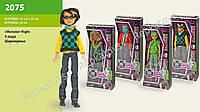 "Кукла ""Monster High"" мальчик, 4 вида, шарнирный, в коробке (ОПТОМ) 2075"