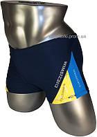 Подростковые плавки боксеры для купания DZ-19-2 синий