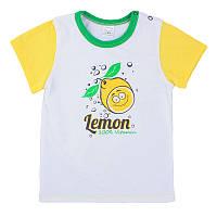 Детская футболка, на рост - 80, 92, 104 см. (арт:1-13н)