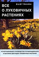 ХЕССАЙОН. Всё о луковичных растениях