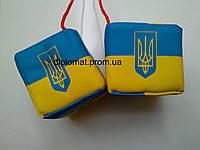 Кубики с флагом и символикой Украины, 2 шт. на присоске