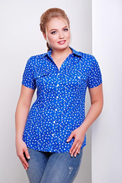 Туники, рубашки, блузы женские