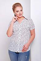 Женская белая блуза большого размера ЯКИРА-Б  Glem 50-54 размеры