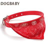 Ошейник для собаки мелкой породы красный
