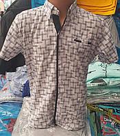 Стильная рубашка(шведка) для мальчика 6-14 лет(опт) (белая16/кл) (пр. Турция)