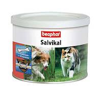 Кормовая витаминно-минеральная добавка Beaphar Salvikal для собак и кошек, 250г