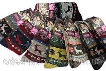 Вовняні шкарпетки з Оленями
