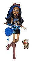 Кукла Monster High Robecca Steam Basic Монстер Хай Робекка Стим базовая с питомцем