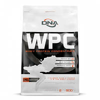 Протеин DNA Supps WPC 900 г