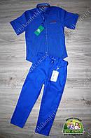 Нарядный костюм мальчику на выпускной цвет электрик: рубашка Lacoste и брюки