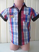 Тениска для мальчика 1-4 в клетку