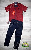 Нарядный костюм для мальчика: красная рубашка с коротким рукавом и брюки