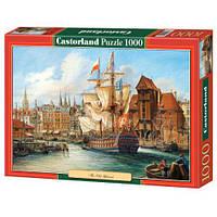Пазлы Castorland 1000, С-102914 С-102914