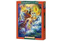 Пазлы Castorland 1000, С-102693 С-102693