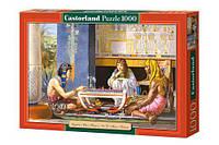 Пазлы Castorland 1000, 2778 2778