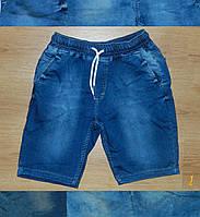 Мужские шорты джинсовый трикотаж Турция 397