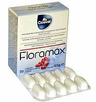 Флорамакс (в капсулах) / Floramax, нормализация флоры кишечника